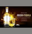 tequila bottle shot glass salt and lemon slice vector image