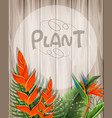 background template with bird of paradise flowers vector image vector image