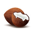 coconut icon broken coconut isolated in white vector image vector image