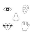 five senses icon vector image vector image