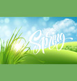 frash spring green grass landscape background vector image vector image