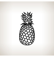 Pineapple in the Contours vector image vector image
