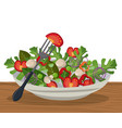 salad vegetables fresh diet lunch image vector image vector image