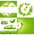 Set From Flower Backgrounds With Ladybug vector image