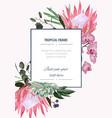 wedding invitation floral invite thank you vector image vector image