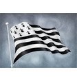 breton flag on wind with rainy sky background vector image vector image