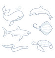 outlines sea creatures vector image vector image