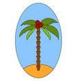 palm tree with coconut on white background vector image