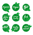 set healthy food emblems eco organic food vector image