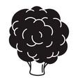 broccoli icon simple style vector image vector image