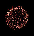 firework red sparkle isolated background vector image