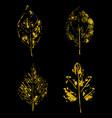 golden leaves on black background vector image