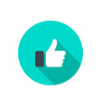 like icon in flat design like icon with shadow in vector image vector image