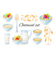 oatmeal icons oat meal in bowl with fruit vector image vector image