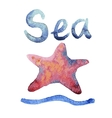 Set of hand drawn watercolor starfishes vector image