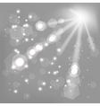 Sun Grey Background vector image vector image