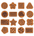 cookies with chocolate sweet vector image