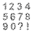 alphabet numberstrendy leopard pattern vector image