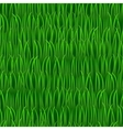 grass seamless background vector image vector image