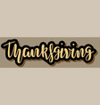 phrase thanksgiving lettering vector image