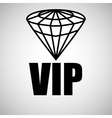 VIP design Exclusive concept Flat vector image