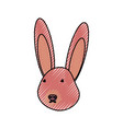 wild rabbit vector image
