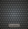carbon fiber pattern vector image vector image