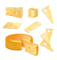 cheese realistic set vector image