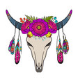 cow skull decorated with flowers vector image
