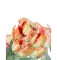 Different color tulips isolated on white EPS 10 vector image