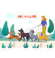 outdoor dog walking composition vector image vector image