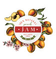 peach jam paper emblem over hand drawn peach vector image vector image