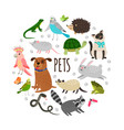 popular pets round banner design cartoon vector image vector image
