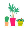 three cute plants color banner vector image vector image