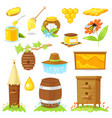 cartoon elements of beekeeping vector image vector image