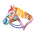 colorful decorative portrait of horse in profile vector image vector image