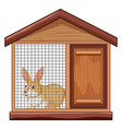 cute rabbit in cage vector image vector image