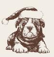 dog with santa claus hat hand drawn vector image vector image
