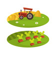 farm agriculture harvest field and tractor with vector image vector image