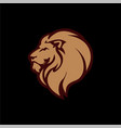 gold angry lion head logo icon sign template vector image vector image