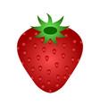 ripe red strawberry icon vector image
