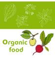 vegan farmer market card set with fresh vegetables vector image vector image