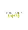 You look superb calligraphic inscription handmade vector image vector image