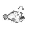 angler deep sea fish with light sketch vector image vector image