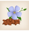 Brown flax seeds with flowers and leaves vector image