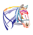 colorful decorative portrait of horse with bridle vector image vector image