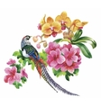 Garden flowers and pheasant birds watercolor vector image vector image