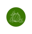 Icon Watermelon in the Contours vector image