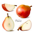 pears whole and slices vector image vector image