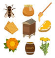 set of items necessary for collecting honey and vector image vector image